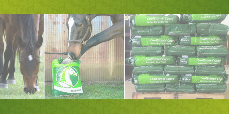 Organic Feeds and Supplements