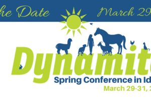 2019 Dynamite Annual Conference and Training